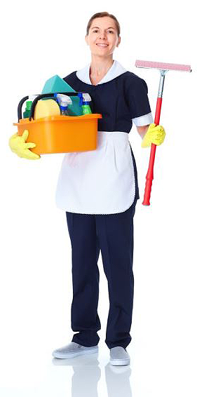 Cleaner Jobs